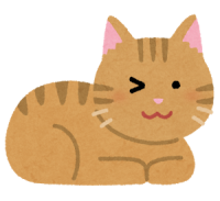 cat_wink_brown