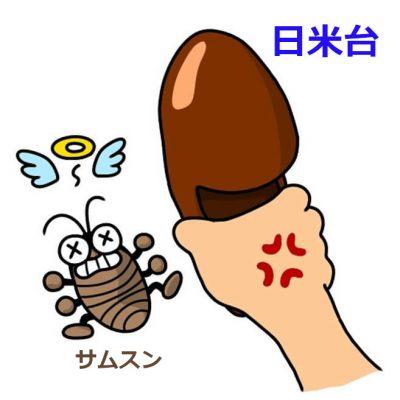 2_gokiburi_taiji