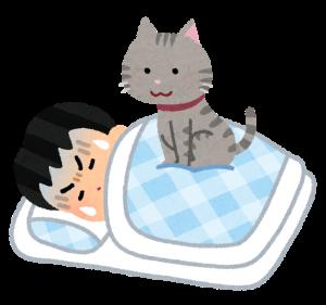 pet_cat_omoi_sleep_man