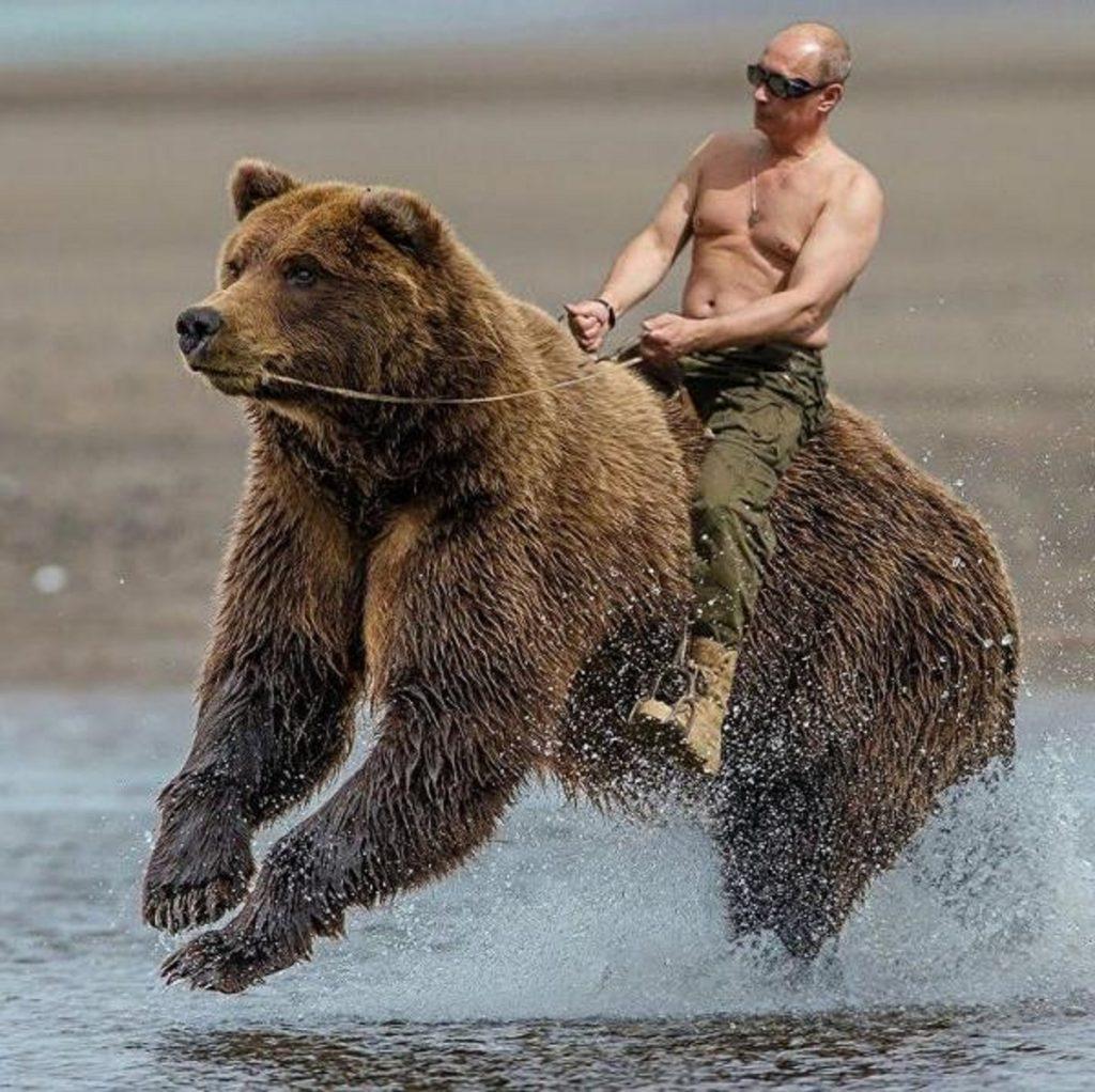 プーチンカレンダーくま-1
