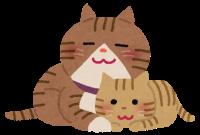 neko_oyako